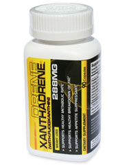 XANTHADRENE 90 Capsules - Burn up to 10% more body weight